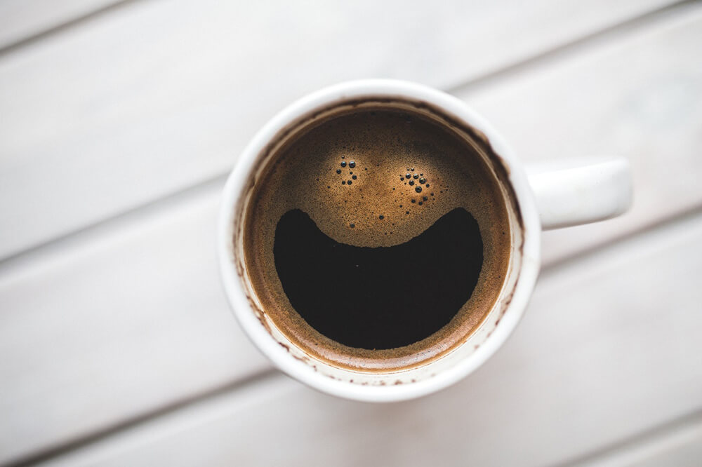 coffee niche ecommerce case study