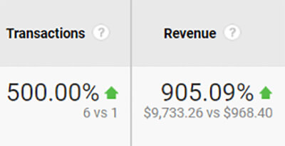 Revenue & Transaction Increase